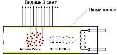 naglyadnyj-primer-principa-raboty-lyuminescentnoj-lampy