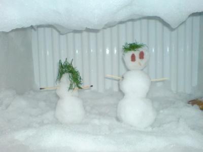 Холодильник сильно морозит 01